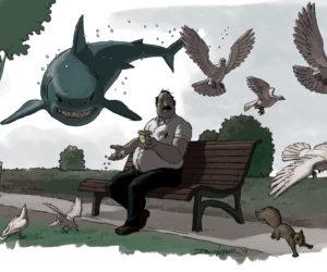 Park Shark