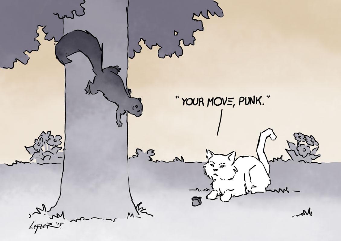 Cat vs Squirrel