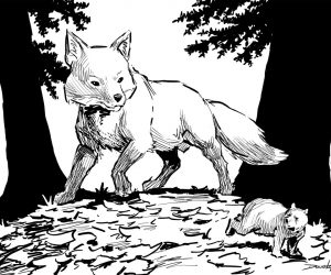 """Fox and Bear"""